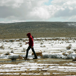 שלג במדבר