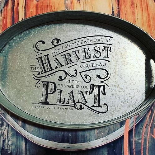 Harvest & Plant