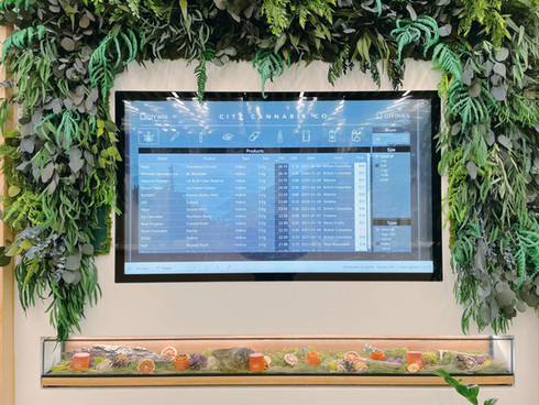 City Cannabis Interactive Product Dashboard