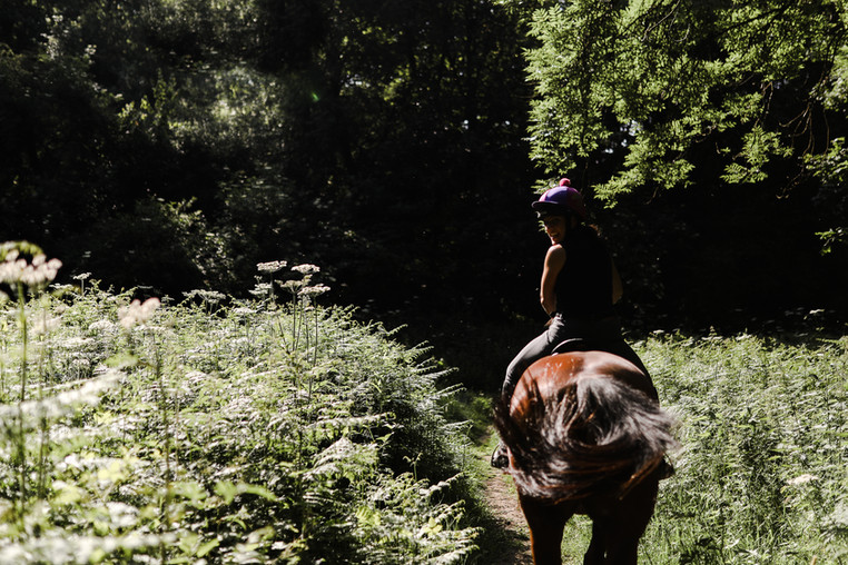 Riding in to the woods