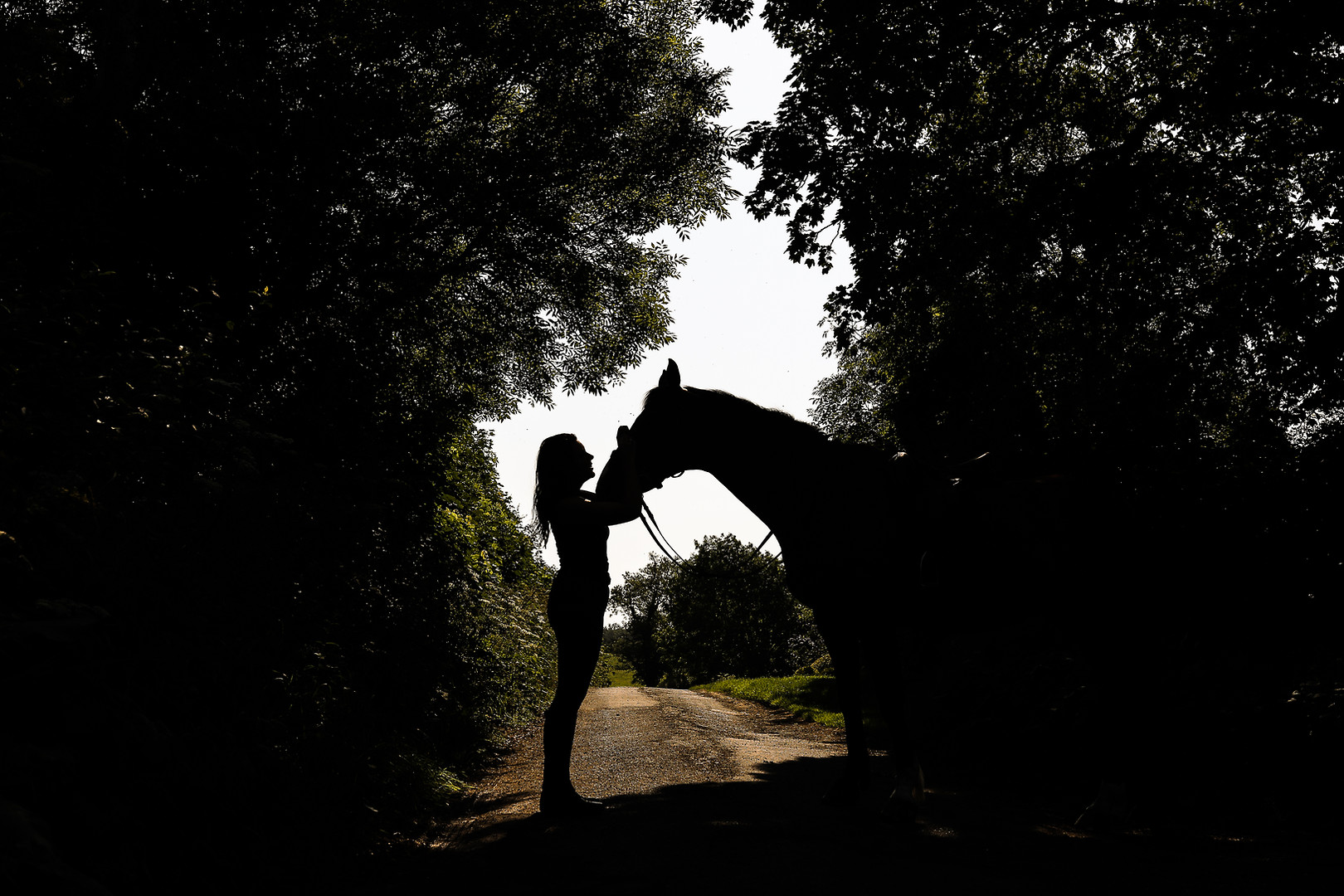 A girl and her horse.