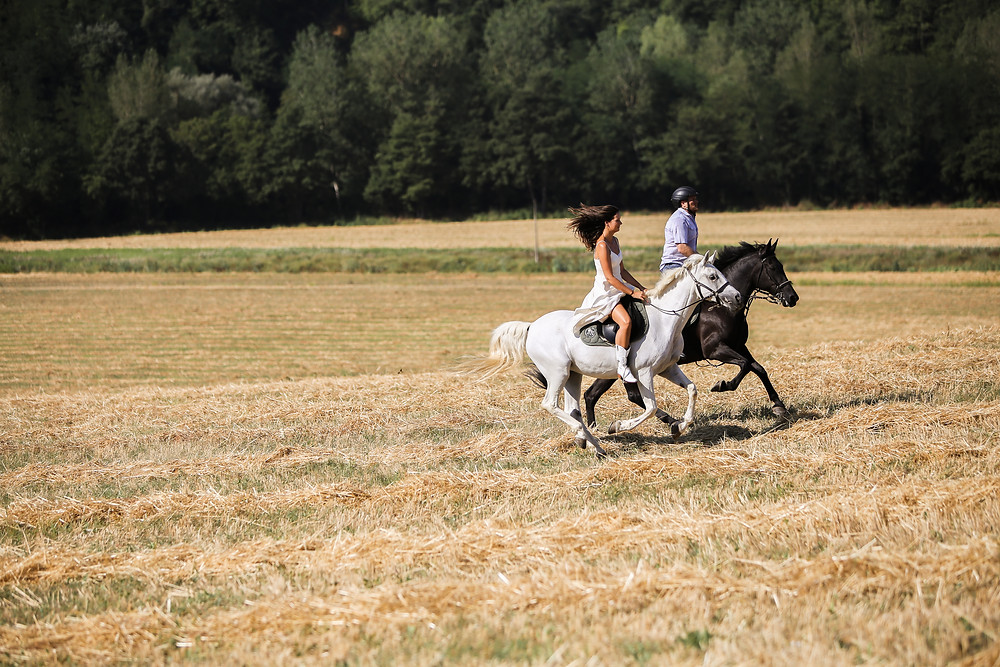 Enjoying a canter across the Tuscan stubble in Italy.