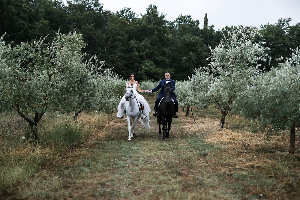 Riding through the olive groves as Mr and Mrs