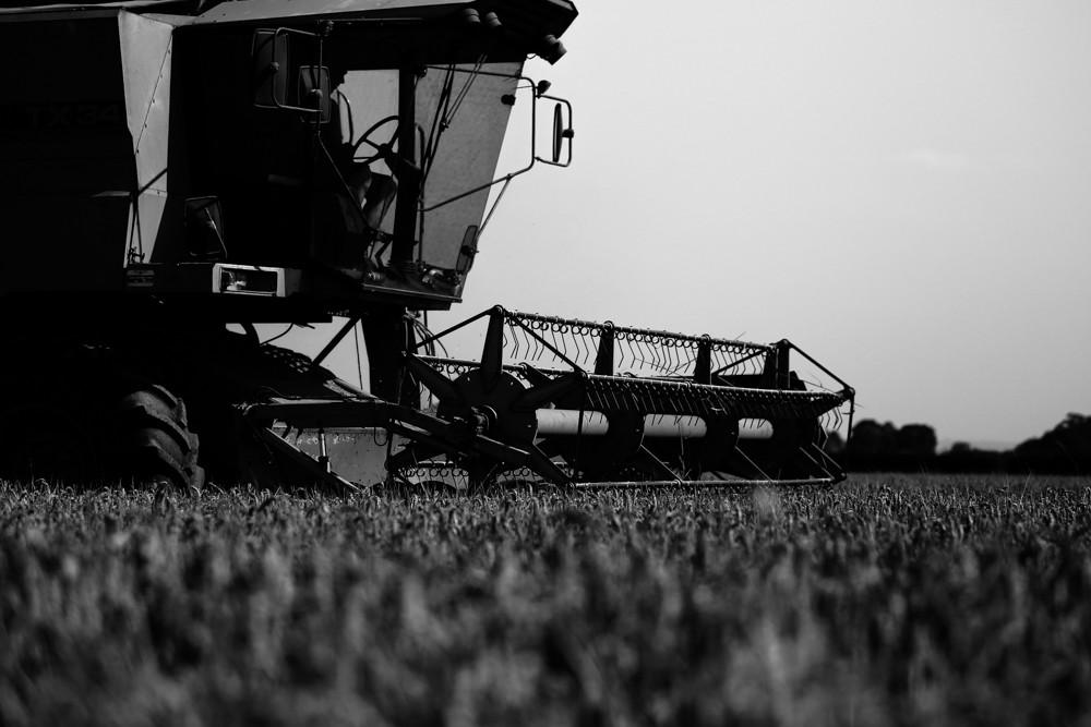 Day 364: Harvest