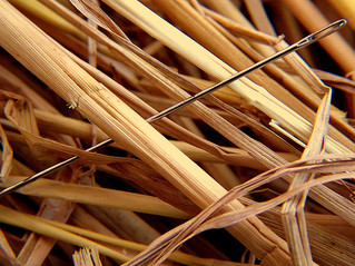 Could Outplacement Firms Help You Recruit the Needle in the Haystack?