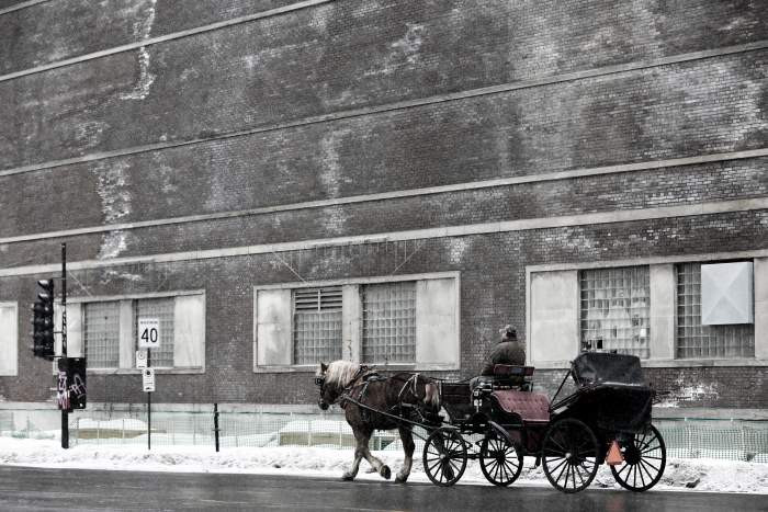 horse drawn carriage on an empty street