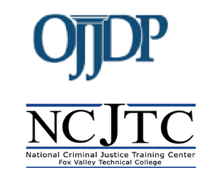 Recorded Webinar - Discussing Trauma-Informed Care for Human Trafficking Victims