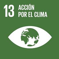 Objetivo de desarrollo sostenible ODS 13 Acción por el clima