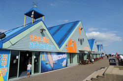 Sealife Adventure - Southend