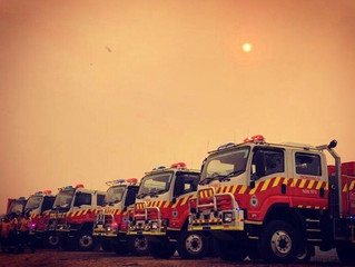 Psychological Support and the Recent Bushfires