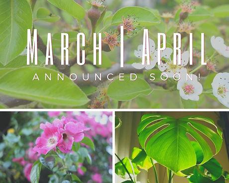 Spring Seasonal Sessons.jpg
