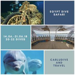 Dive Safari 2018