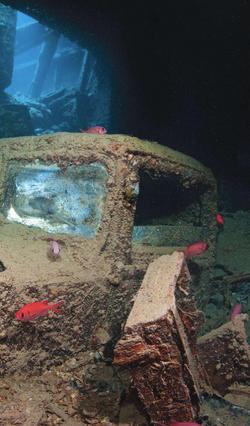 Thistlegorm Wreck - Red Sea
