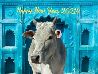 サンカルパ 新しい1年の抱負を瞑想する