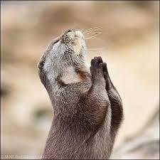 祈りのチカラ