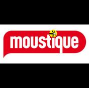 17 moustique.png