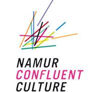 10 namur confluent culture.jpg