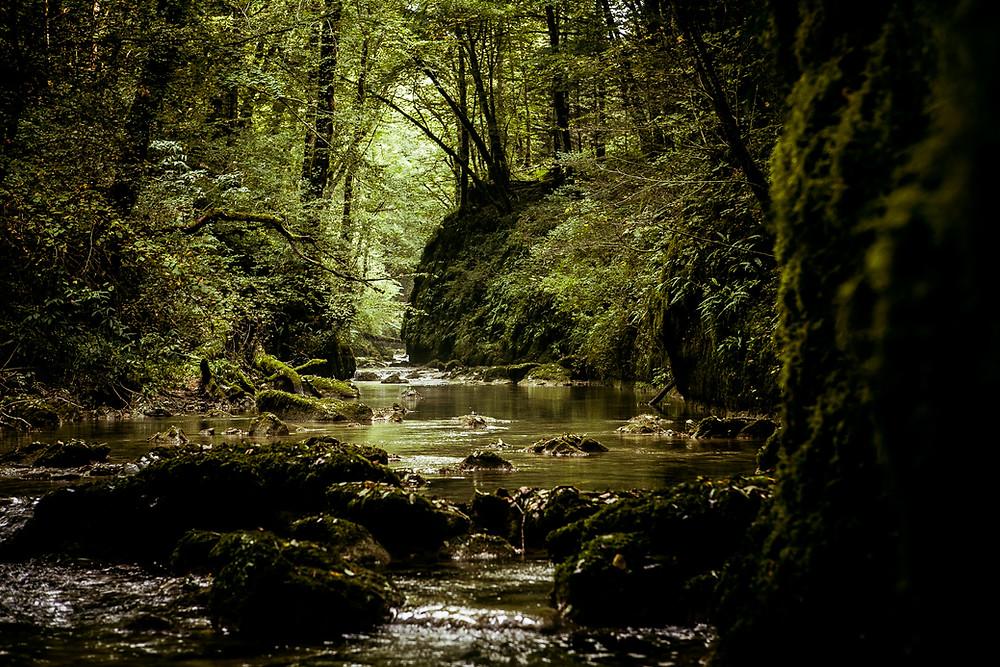 Vallée de la Brême-4087.jpg