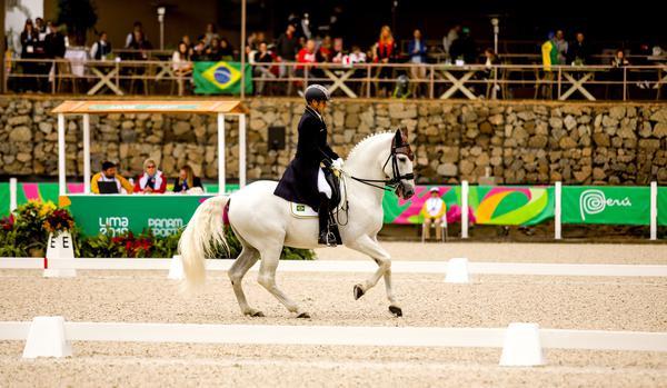 Time Brasil de Adestramento vem em 3º na briga por medalha e vaga olímpica nessa 2ª, 29/7
