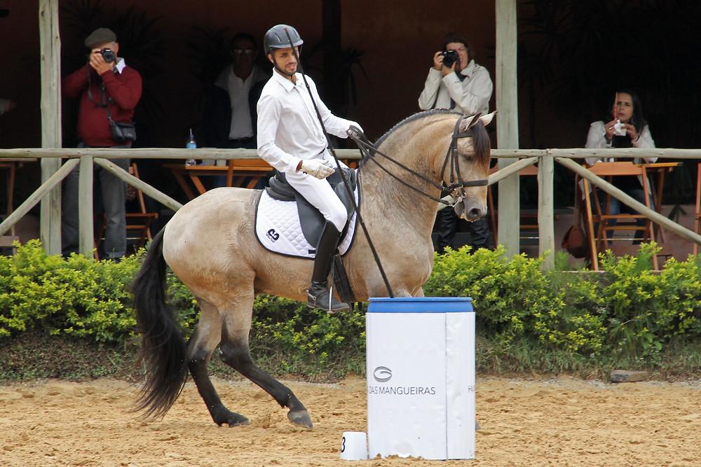 Equitação de Trabalho: mundialmente predominado pelo cavalo Lusitano, o esporte promoverá um desafio internacional durante a Expo Internacional da raça (foto Ney Messi/cedida)