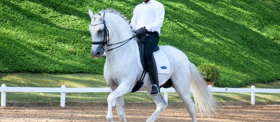 Primeira etapa do Ranking de Adestramento Interagro destaca jovens promessas e cavalos consagrados