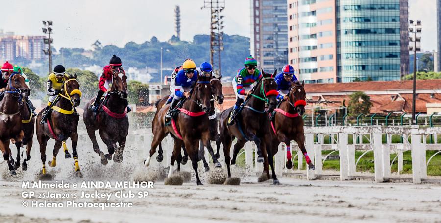 Emoção e adrenalina no Jockey Club de São Paulo