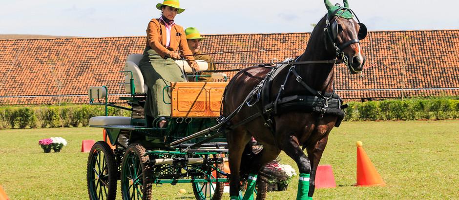 Elegância da Atrelagem e tradição do Polo, juntas no mesmo evento em Indaiatuba