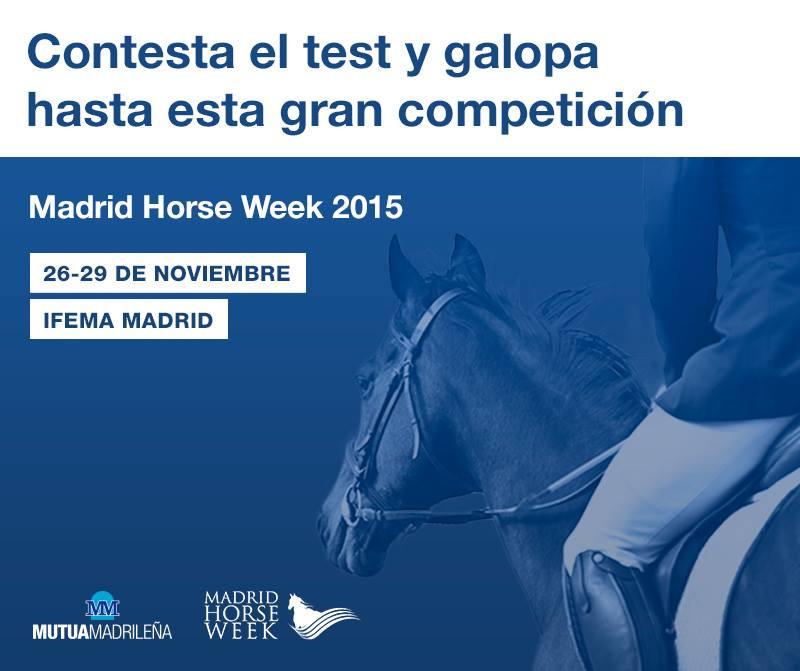 No final deste mês (26 a 29/11), a Espanha realiza o seu maior evento equestre do ano: Madrid Horse Week. Trata-se de um acontecimento multidisciplinar, em que as competições de diferentes modalidades equestres têm lugar de destaque, ao lado de concertos e todos os tipos de espectáculos e exposições.