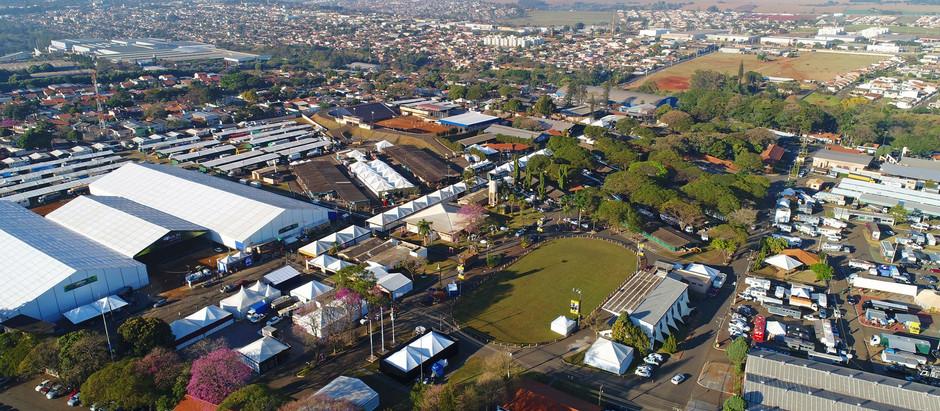 Londrina (PR) sedia evento com 19 esportes equestres esta semana