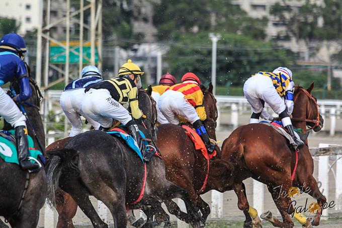 No turfe, Derby se refere a uma corrida de cavalos que faz parte daTríplice Coroa (título oficial instituído pelas sociedades de turfe, conquistado por cavalos de três anos de idade que vencerem três provas exclusivas, disputadas em percursos de distâncias diferentes).