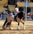 Luiza Magalhães monta Royal Cream na Expo Cavalos