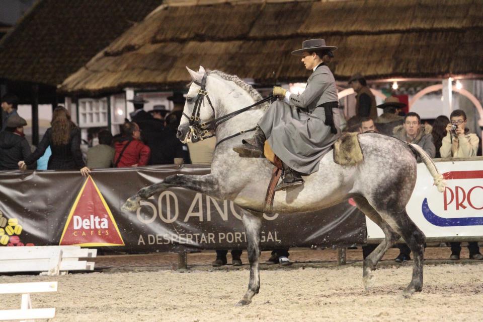 A Feira de Golegã, um dos mais antigos eventos equestres de Portugal, começa nesta semana - de 4 a 13/11 - com muitas atrações, desde concursos de Adestramento, Salto, Enduro, Atrelagem, Equitação de Trabalho, exposições de fotografia e pintura, shows equestres, até um tradicional torneio de Tênis - XIX Open Golegã FNC.