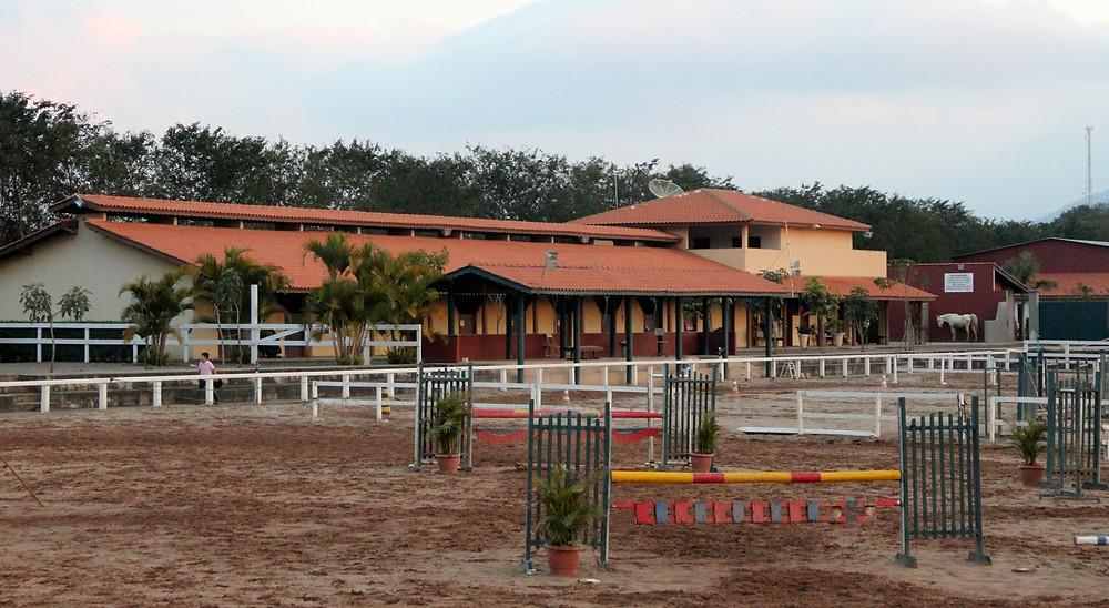 A Hípica Bonanza Porto Atibaia é uma extensão do Rancho Bonanza que nasceu em 1990, e onde são domados, preparados e treinados cavalos de várias raças, em especial Lusitanos e Mangalarga Marchador.