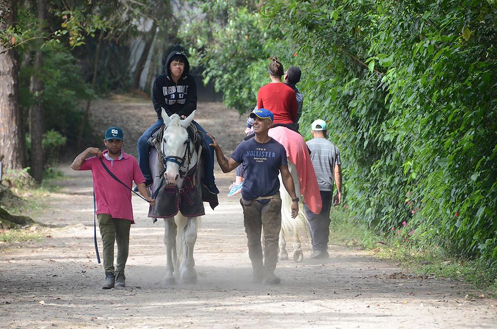 Equoterapia, na Escola de Equitação da Hípica.