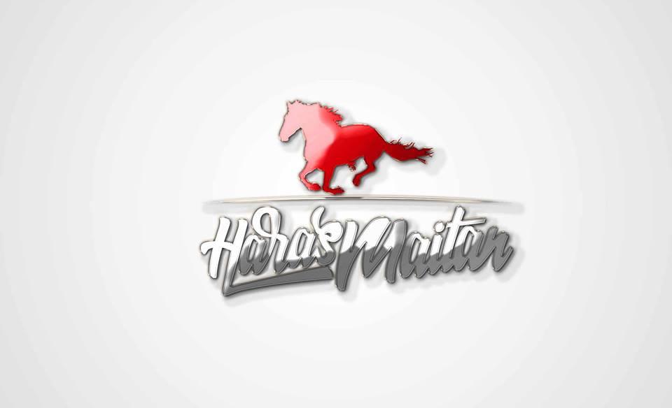 Leilão Virtual Haras Maitan 13 de março, às 20h
