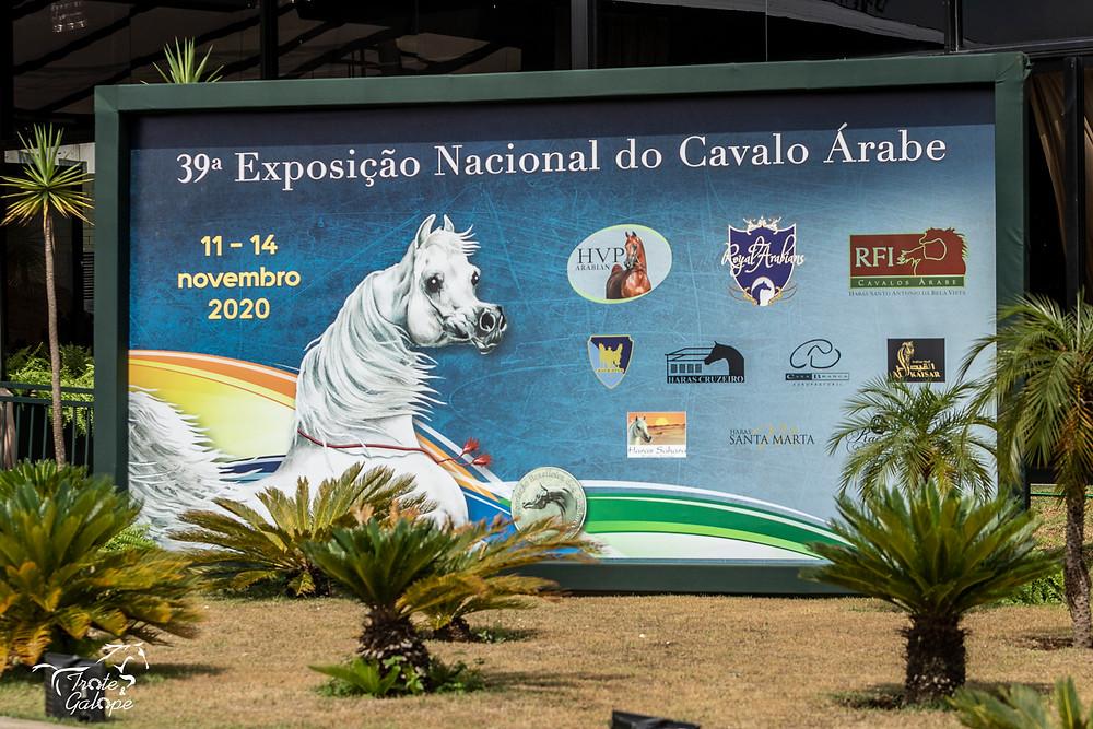 Painel fotográfico símbolo da 39ª Exposição Nacional do Cavalo Árabe à entrada da arena coberta do Helvetia Riding Center (foto Heleno Photoequestre)