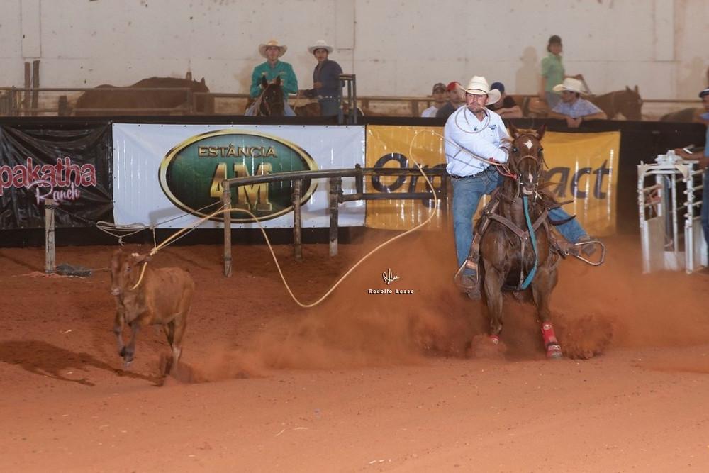 Homem montado a cavalo laça bezerro em competição da ANLI