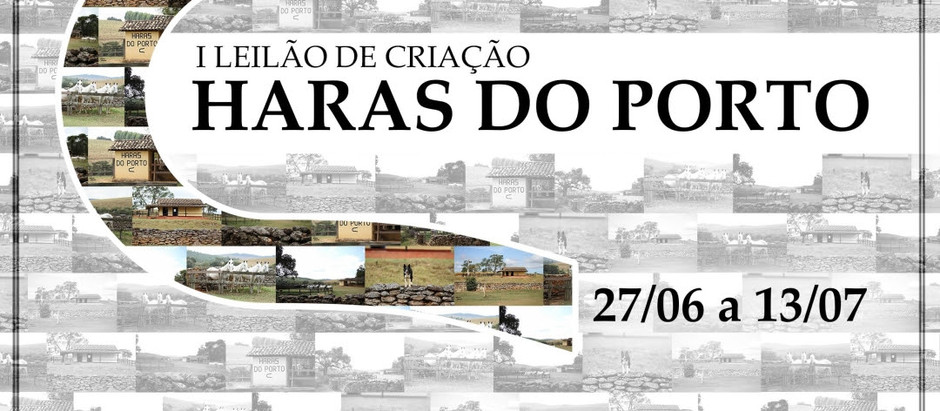 I Leilão de Criação Haras do Porto