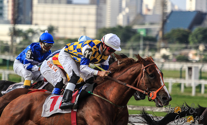 Jockey Club de São Paulo promete 21 páreos de muita adrenalina