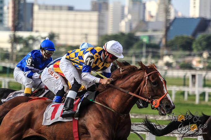 Hipódromo Paulistano se aproxima da 100ª corrida do ano
