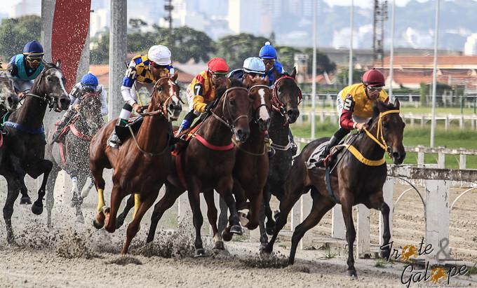 100ª corrida do ano:  neste sábado, no Hipódromo da Cidade Jardim, SP.