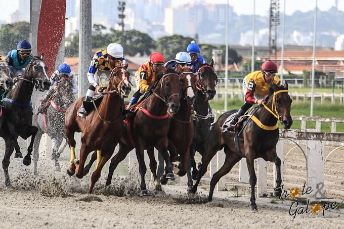As emoções das pistas do Jockey Club de São Paulo.