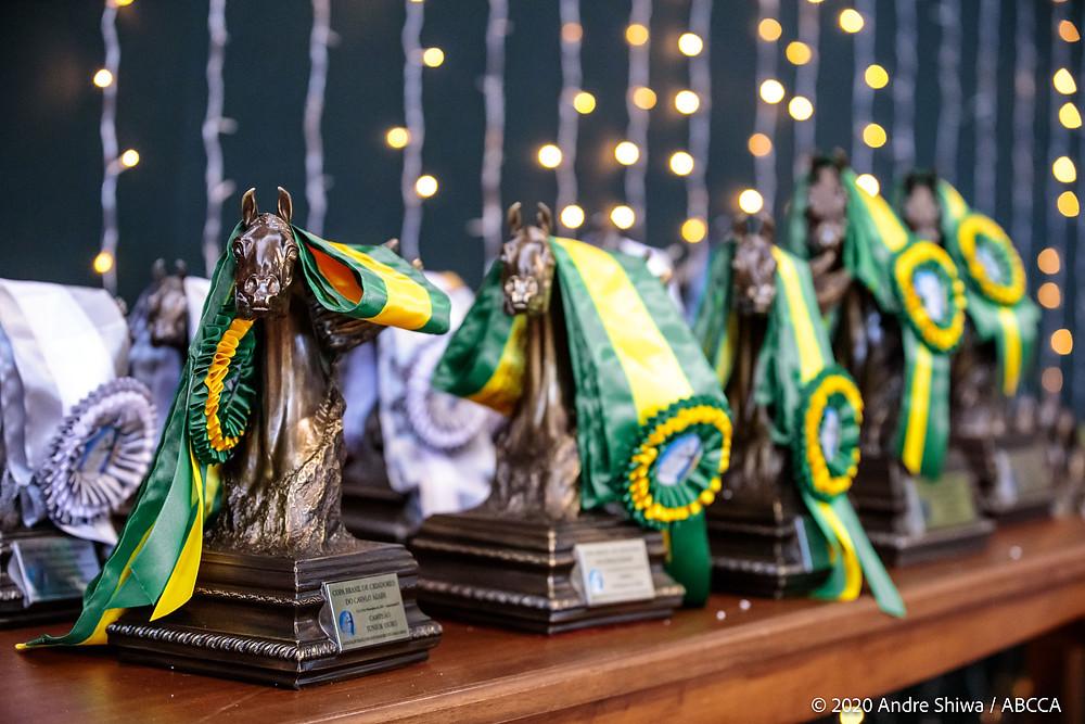 Mesa com troféus e faixas verde-amarelo de premiação da 39ª Nacional do Cavalo Árabe, fotografada por André Shiwa