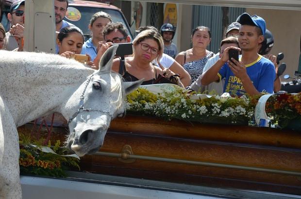 No velório de seu dono, cavalo comove a família ao 'se despedir' do amigo vaqueiro