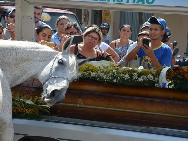 O tordilho de nome Sereno foi levado ao velório para se despedir do dono e, ao ser colocado próximo ao veículo funerário, deitou a cabeça sobre o caixão chamando a atenção de todos os presentes.