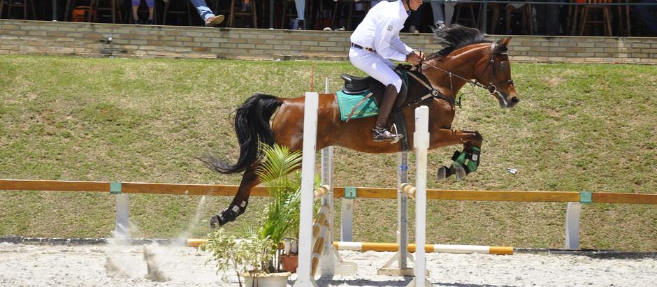Cavalo Árabe dará premiação inédita no Arabian Cup 2021
