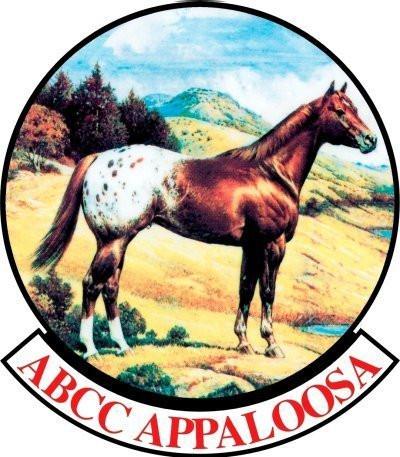 ABCC_Apaloosa.jpg