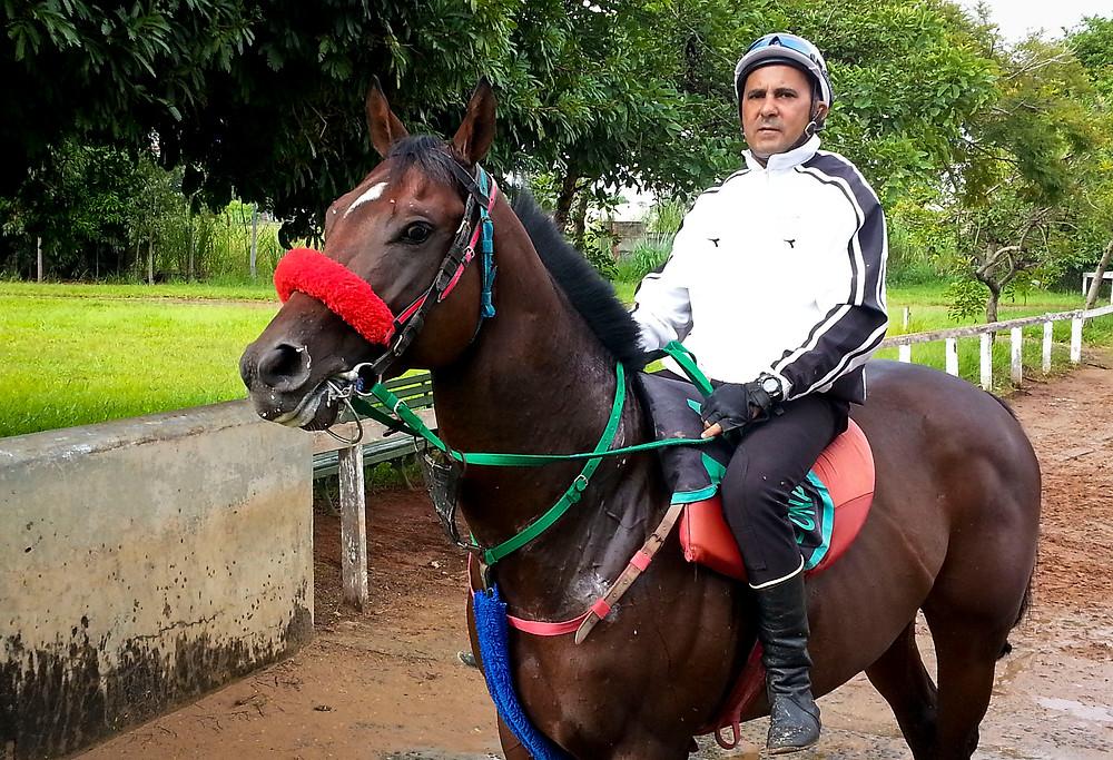 Jockey Club  de São Paulo será novamente fortalecido e estará pronto para assumir o seu papel de inegável marco institucional da cidade de São Paulo