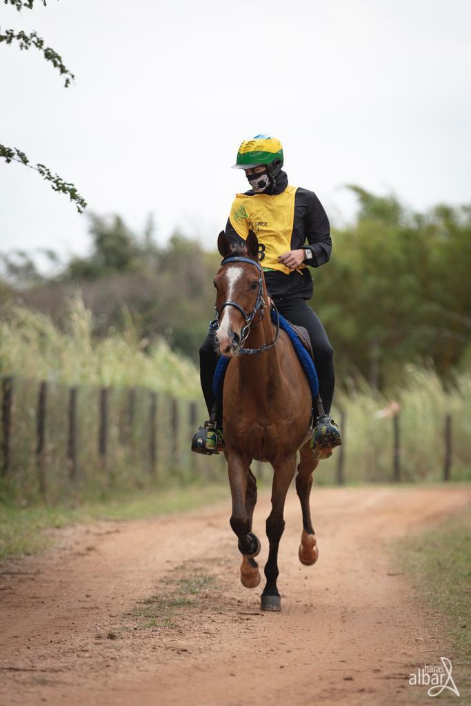 Caio montado em seu cavalo Árabe Haras Albar/Divulgação