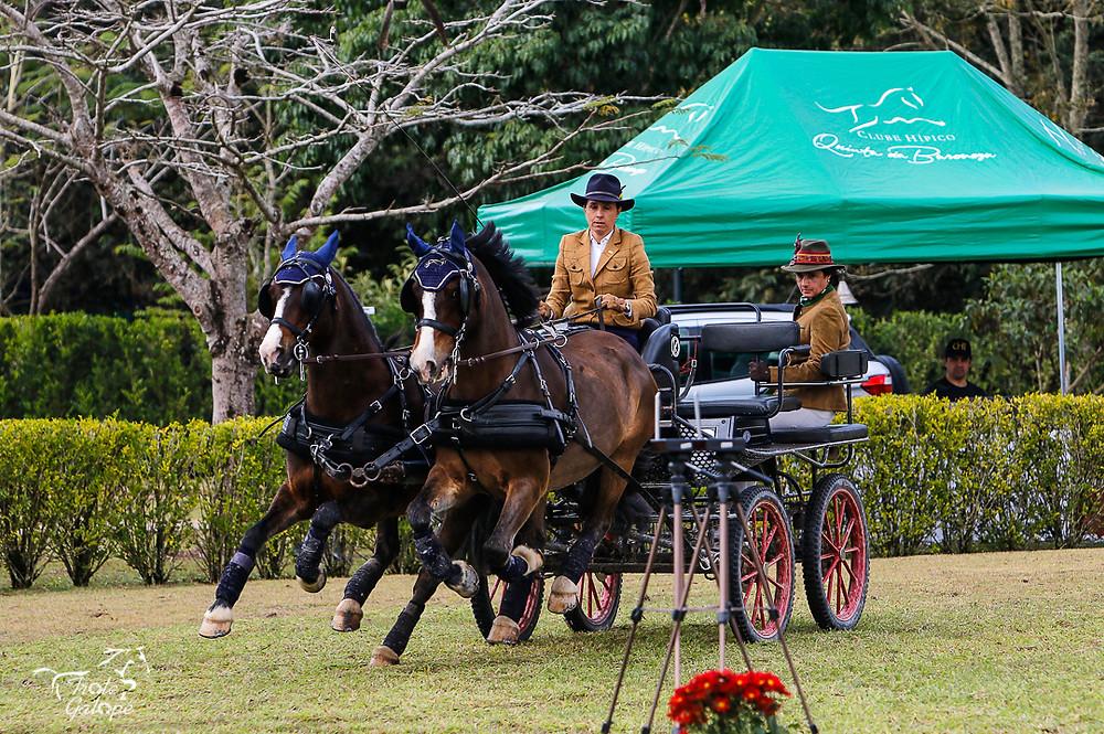 Carol Borja, Ana Carolina Borja de Almeida, (Angela Schönburg) conduz Parelha Profissional em prova de Atrelagem na Quinta da Baroneza